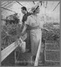 Couple in Greenhouse 2